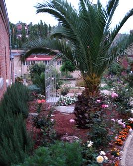 Quiet Garden 2